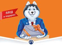 «Плед в подарок» от ОАО АКБ «Металлинвестбанк»
